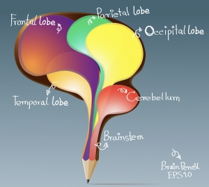 Brain Based Writing