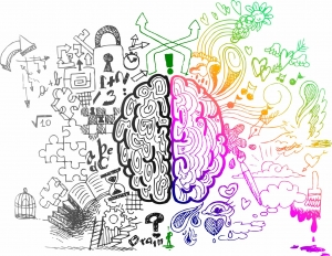 activating-the-brains-emotional-centers-for-learning