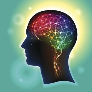 Reading Brain How it Works