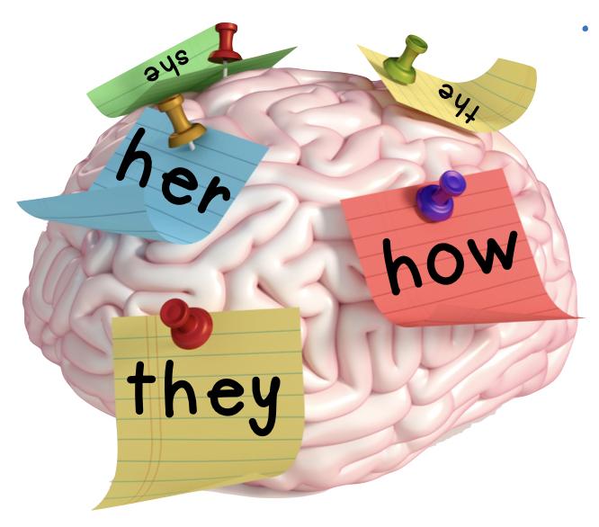 brain based sight words